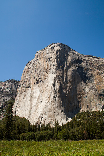 El Capitan, seen from the meadows below.