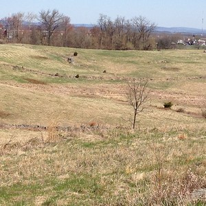 Gettysburg field - David and Phyllis Oxman