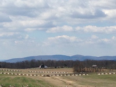 Gettysburg - David and Phyllis Oxman