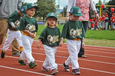 Youth Baseball Opening Day