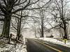 Snowroad2