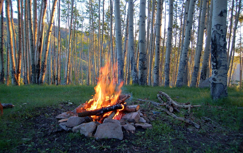 Camping in the Aspens on Hillside Drive