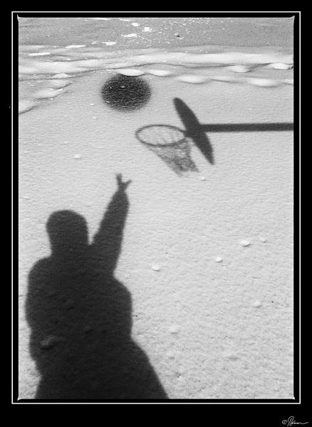 basket_16551194270_o
