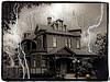Spooky Linden2