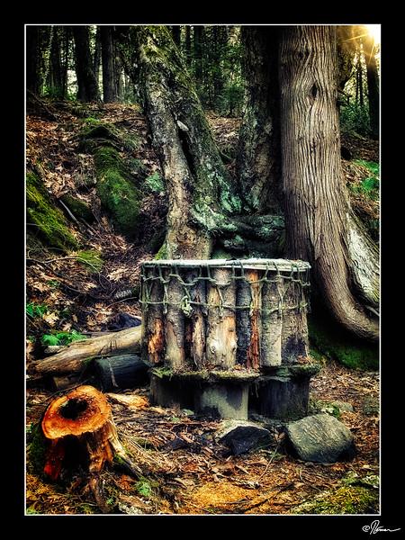 saint-andre-avellin-sentier-de-lauberge-8_23003959833_o