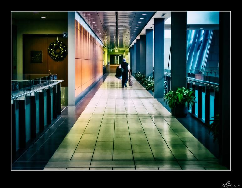 arrivee-de-cuba---aeroport-dottawa-3_15543150373_o