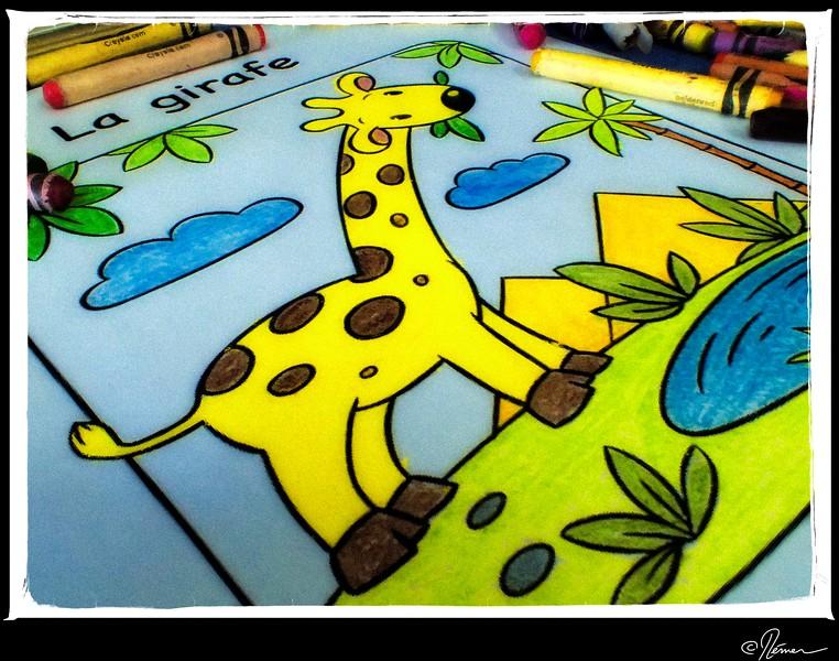 girafe_16959628720_o