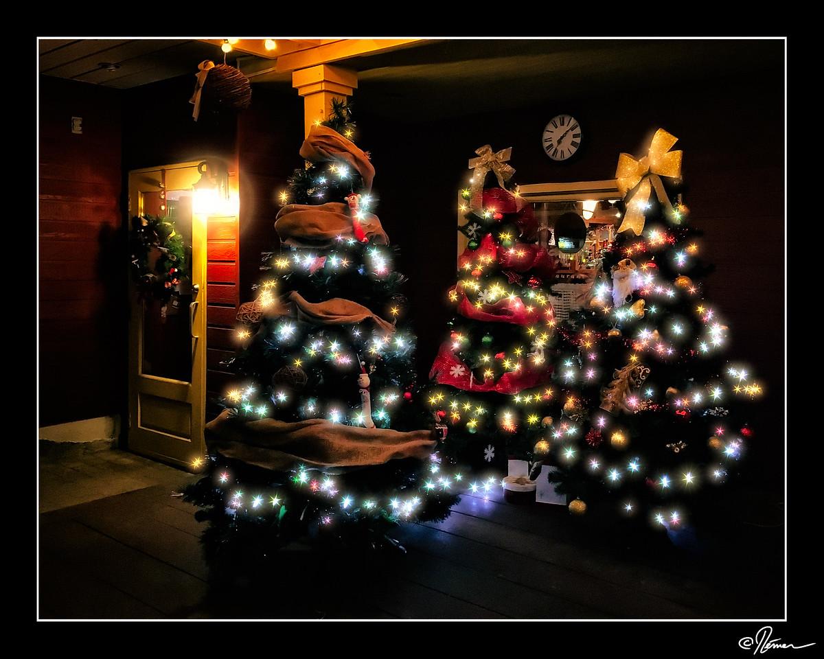 tree-three-amigos_23560480301_o