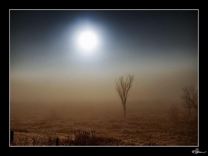 dans-la-brume-du-matin-a-gatineau-5_22904078356_o