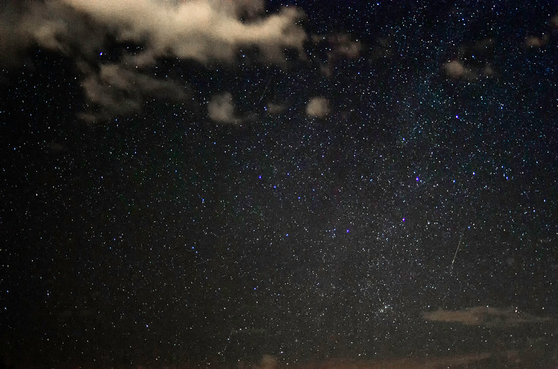 Perseid amidst light pollution.