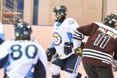 Game 3 - Pittsburgh Penguins Elite Vs Ottawa Valley Titans