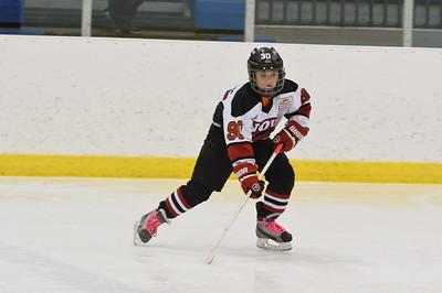 SQUIRT AA - Novi Ice Cats vs Birmingham Rangers