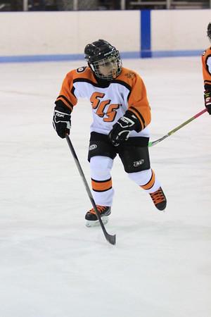 St Clair Shores Flyers - Mite B