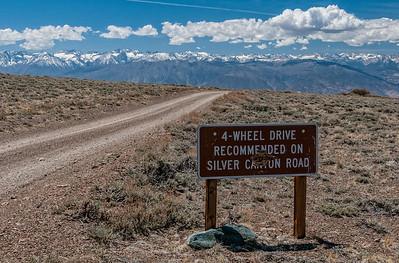 Silver Canyon - Patriarch Grove 2015