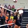 Sandwich volleyball vs somonauk 5