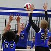 Newark volleyball at Rosary 3