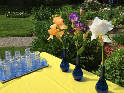 Flower Design Celebration in Avis Campbell Gardens