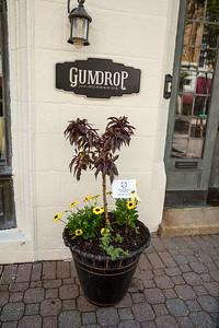 Gumdrop Hairdressing