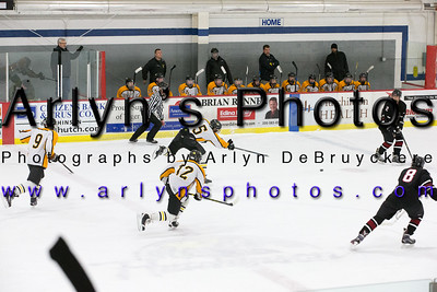 Boys Hockey vs New Prague