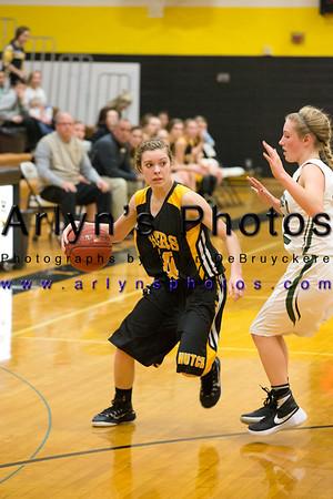 Girls Basketball vs Litchfield