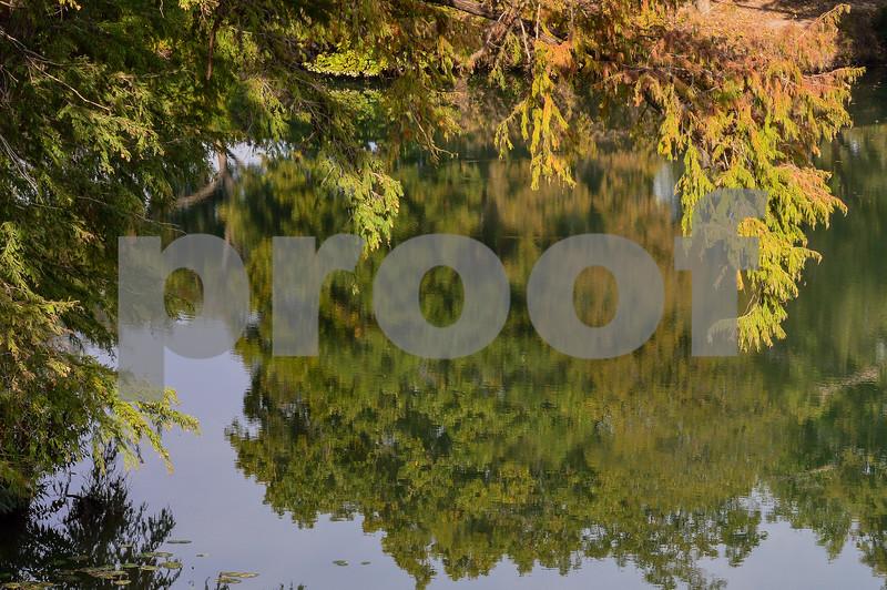 Advanced<br /> Landscape<br /> Patrick Moloney<br /> Robert G. Cole High School<br /> San Antonio TX<br /> Brenda Marafioto Instructor