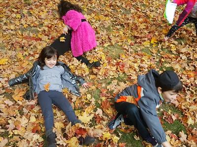 Fall Fun in First Grade