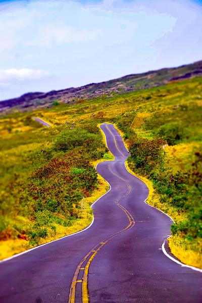 Road to Ulapalakua