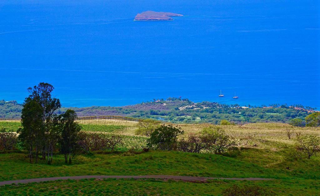 Kula View of Molokini