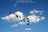 Argentine : Les basket sont devenues un symbole de croma on . Depuis le 30 decembre 2004 , les chaussures qu'utilisaient la tribu de Rollingas , les fans du groupe qui jouait ce soir la , s'affichent en signe de lutte pour la memoire des 194 victimes / zapatos / Argentinien : Schuhe hängen über einem Seil © Nicolas Pousthomis/Sub.Coop/LATINPHOTO.org  ( This picture is blocked for publication in France )