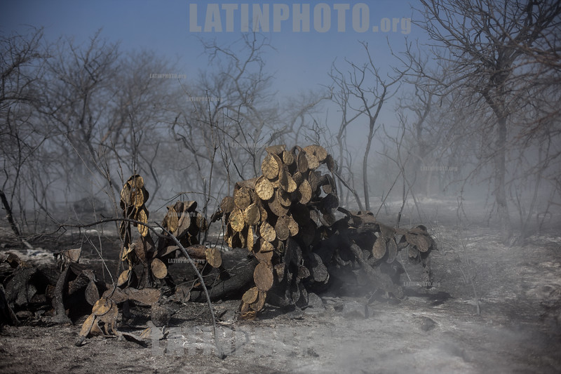 Argentina : Cuidadores de Cenizas en el valle de Paravachezca , Departamento de San Martin , Cordoba durante los incendios en la provincia / Argentinien : Buschbrand im Thal valle de Paravachezca © Nicolas Pousthomis/Sub.Coop/LATINPHOTO.org  ( This picture is blocked for publication in France )