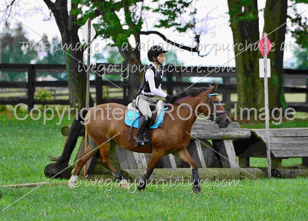 Rider Number: 4