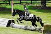 Rider Number: 331
