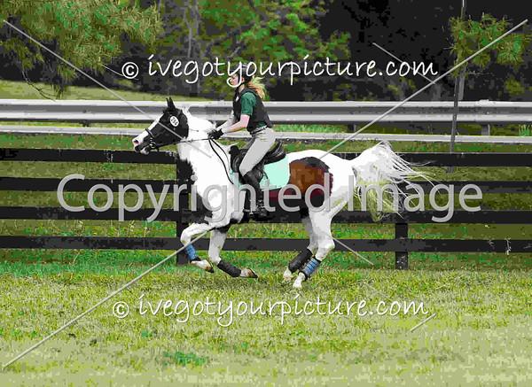 Rider Number: 284