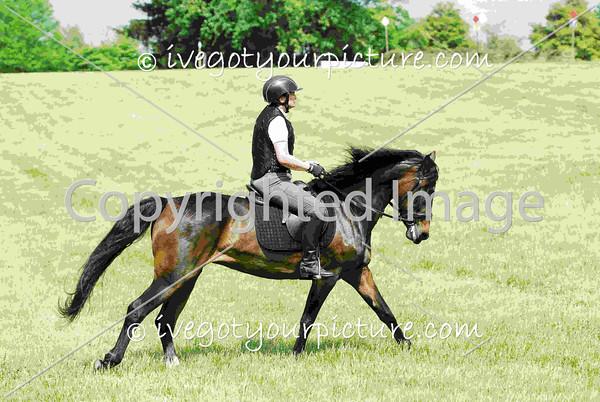 Rider Number: 349