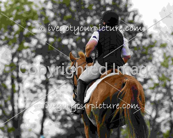 Rider Number: 264