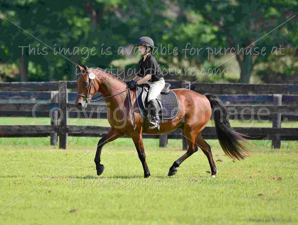 Rider #8 - Marcum McLean