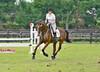 Rider #50 - Emily Zurkuhlen