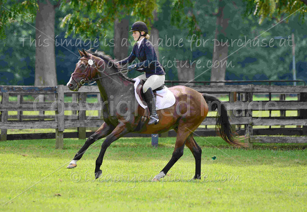 Rider #27 - Amanda Ellis