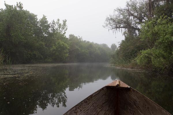 2015 Everglades-0046.jpg
