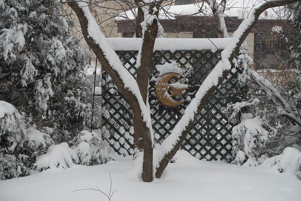 2015 Winter Storm-12.jpg