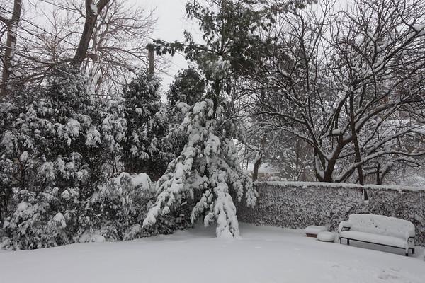 2015 Winter Storm-10.jpg