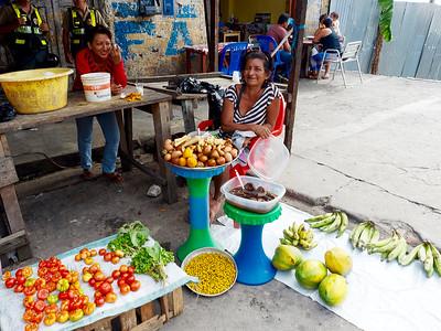 Penn Alumni Travel: The Amazon 2016