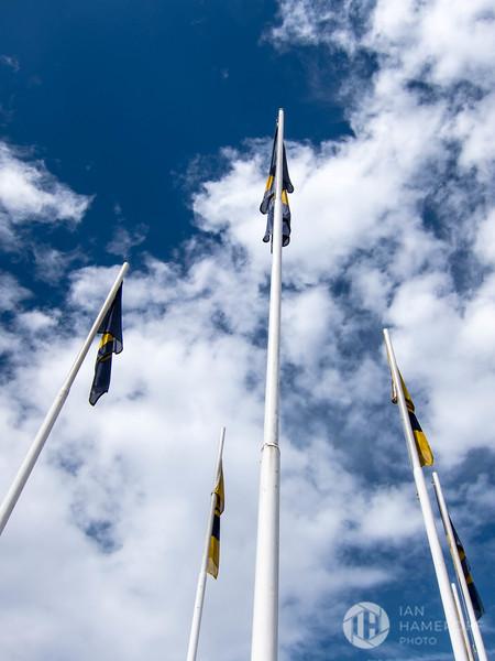 Pumas Flag Poles