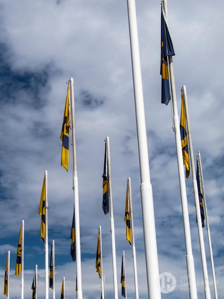 Flags of Pumas