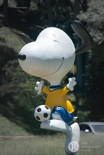 Seleção Snoopy