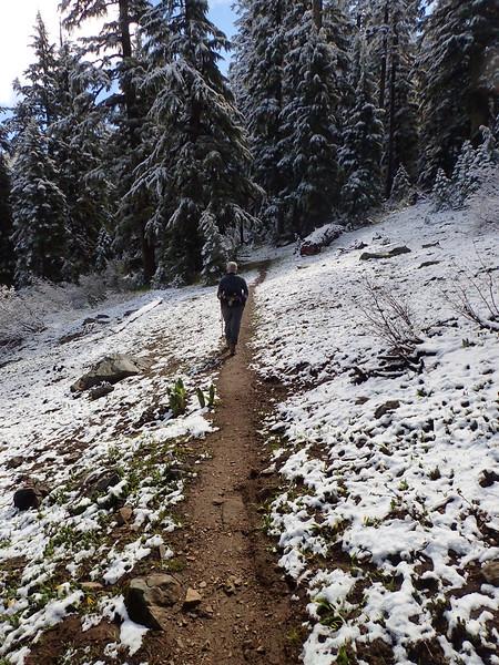 Observation Peak Siskiyou Crest Oregon