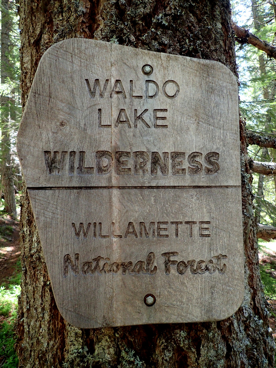 Waldo Lake Wilderness Oregon