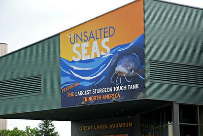 2016 07 14: Great Lakes Aquarium, Emma Pardini, Unsalted Seas