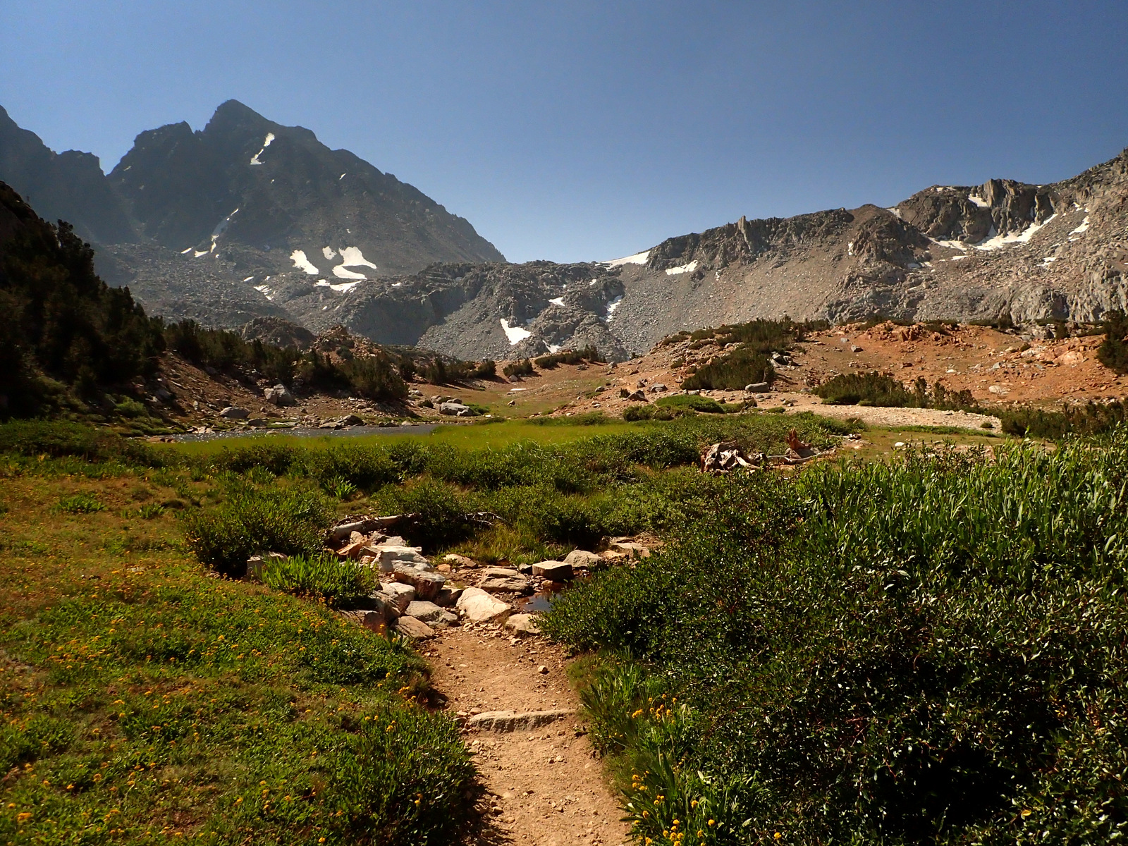 Hoover Wilderness California