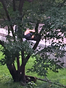 2016 08 02: UMD, person lying on concrete wall